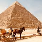 piramide_-_camello_-_egipto.jpg?itok=9NuIyNAC