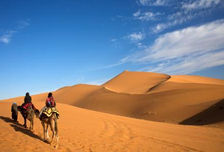 excursion-desierto-camellos.jpg?itok=NioWYIP4